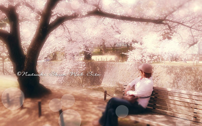 お花見だ〜い*